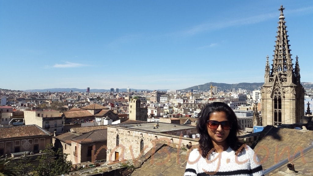 Barcelona-Cathedral Rooftop