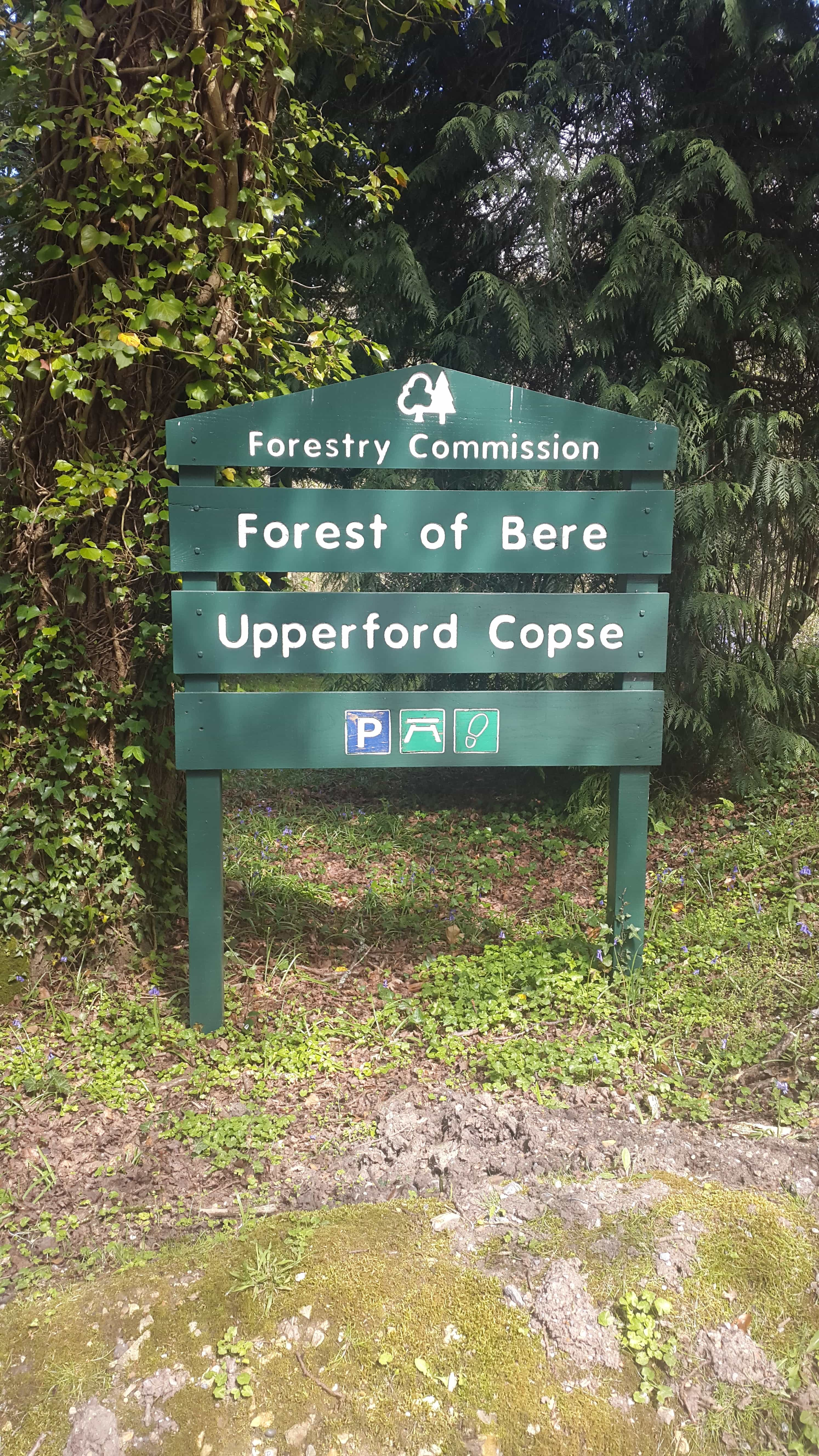 Forest of Bere, Upperford Copse